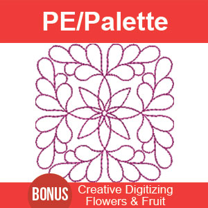PE/Palette Digitizing Lesson