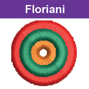 floriani lev 2 lesson 2 icon