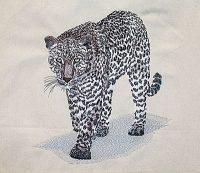 leopard digitized