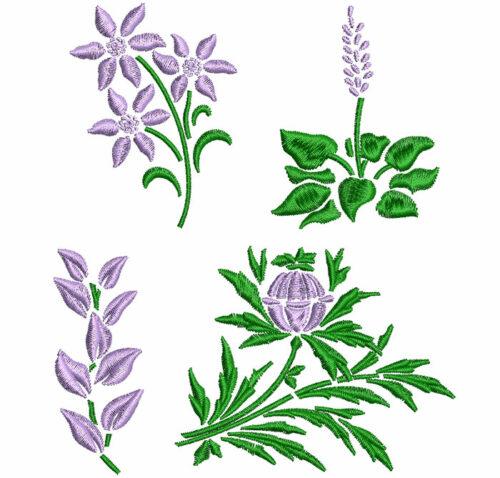 Summer Floral ESA Elements