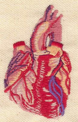 Embroidery Design: Heart anatomy 1.80w X 3.00h