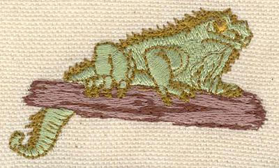 Embroidery Design: Iguana2.38w X 1.50h