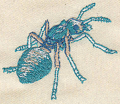 Embroidery Design: Ant 2.35w X 1.99h