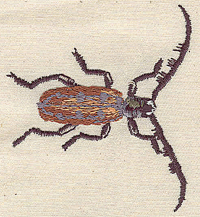 Embroidery Design: Long Horned Beetle 2.31w X 2.56h