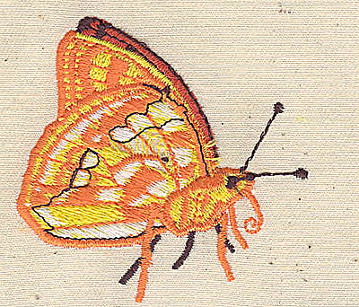 Embroidery Design: Butterfly 2.37w X 2.35h