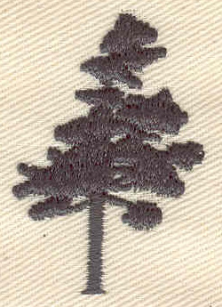 Embroidery Design: Pine tree  1.02w X 1.63h