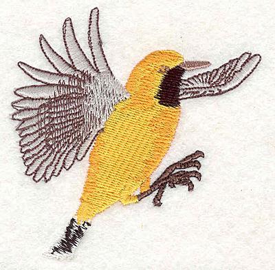 Embroidery Design: Orange Chat 3.17w X 3.09h