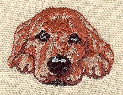 Embroidery Design: Labrador 1.79w X 1.35h