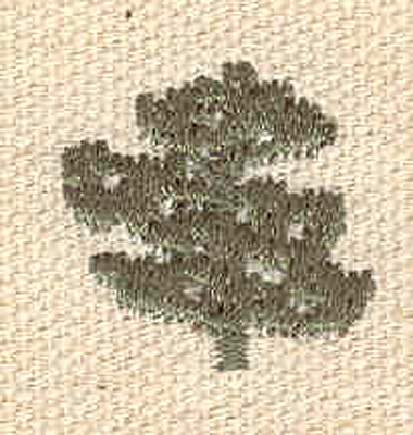 Embroidery Design: Evergreen M 0.78w X 0.74h