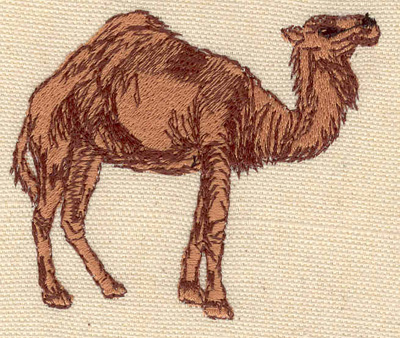 Embroidery Design: Camel 3.00w X 2.60h