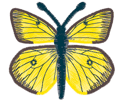 Embroidery Design: Butterfly Clouded Sulphur small3.90w X 2.10h