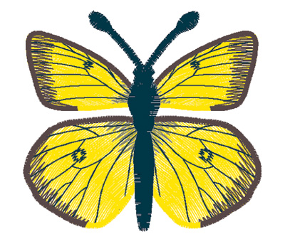 Embroidery Design: Butterfly Clouded Sulphur large4.67w X 2.53h