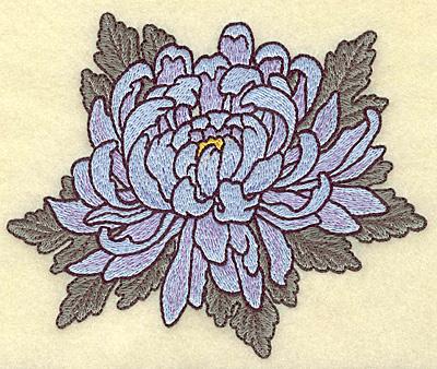 Embroidery Design: Chrysanthemum  5.34w X 4.52h
