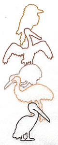 Embroidery Design: Birds of Australia large 2.58w X 6.98h