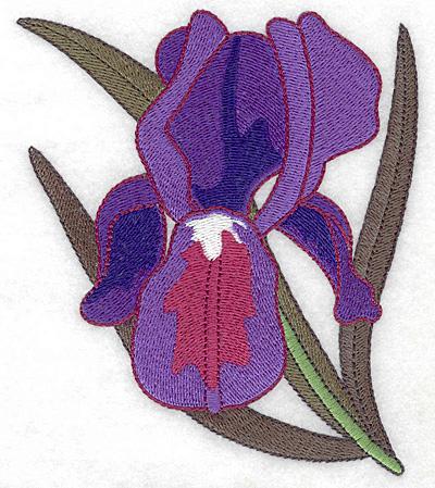 Embroidery Design: Iris large 4.26w X 4.99h