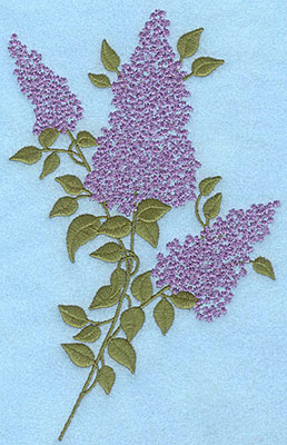 """Embroidery Design: Lilac blooms A 4.49""""w X 7.00""""h"""
