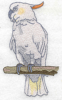 Embroidery Design: Bird D large parrot 2.93w X 4.97h
