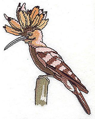 Embroidery Design: Bird H large 3.95w X 4.97h
