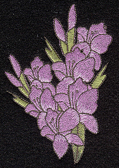 Embroidery Design: Iris 2.69w X 4.01h