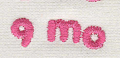 Embroidery Design: Text 9 mo 4.53w X 1.29h