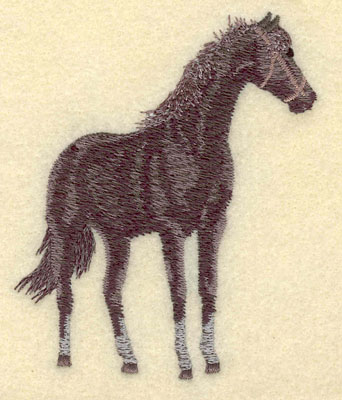 Embroidery Design: Horse Standing Small3.17w X 3.77h