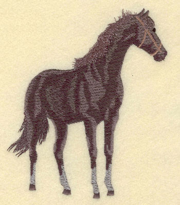 Embroidery Design: Horse Standing Large4.52w X 5.39h