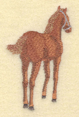 Embroidery Design: Colt Small2.15w X 3.54h