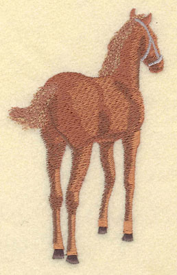 Embroidery Design: Colt Large3.5w X 5.02h