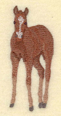 Embroidery Design: Colt Facing Forward Small1.48w X 3.49h