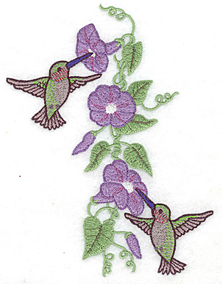 Embroidery Design: Hummingbirds at morning glory 5.00w X 6.36h