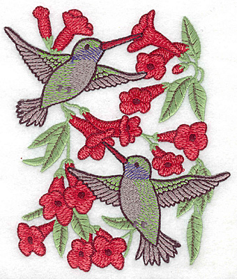 Embroidery Design: Hummingbirds at trumpet flower 5.00w X 5.68h
