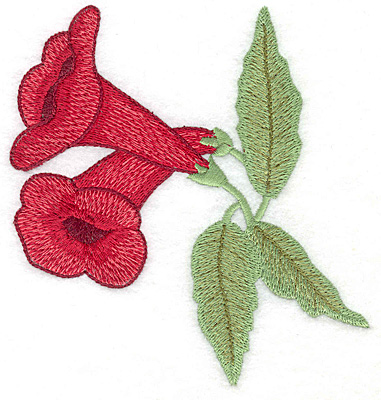 Embroidery Design: Trumpet flower duo large 4.78w X 4.99h
