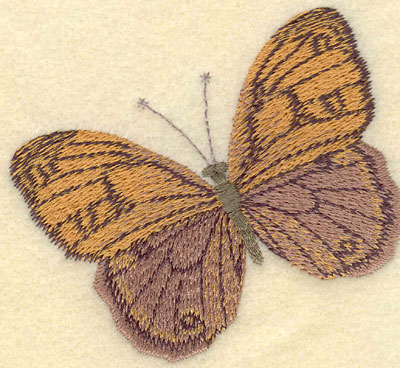 Embroidery Design: Butterfly Large3.52w X 3.20h