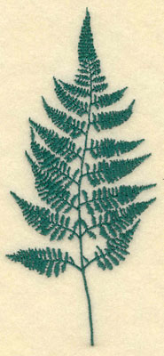 Embroidery Design: Large Fern B2.68w X 6.03h