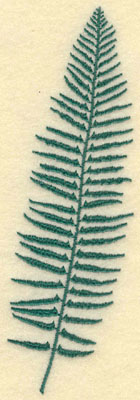 Embroidery Design: Large Fern C1.88w X 6.02h