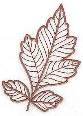 Embroidery Design: Leaf 7 medium 3.67w X 4.98h