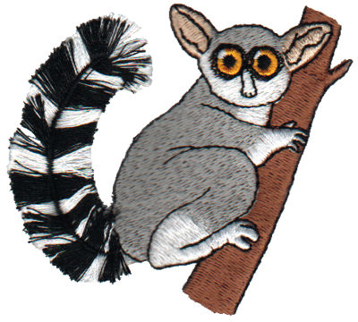 "Embroidery Design: Fringe Lemur3.11"" x 3.06"""