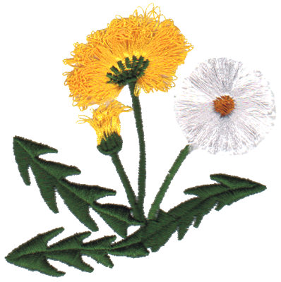 "Embroidery Design: Dandelion3.10"" x 3.03"""