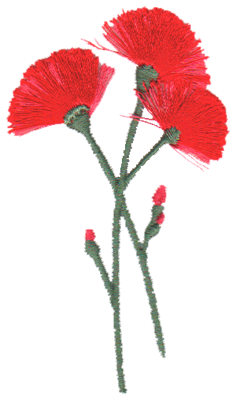 "Embroidery Design: Pink Carnations1.85"" x 3.19"""