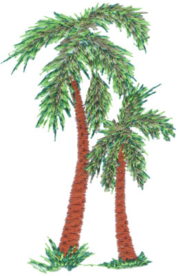 "Embroidery Design: Palm Trees2.07"" x 3.18"""