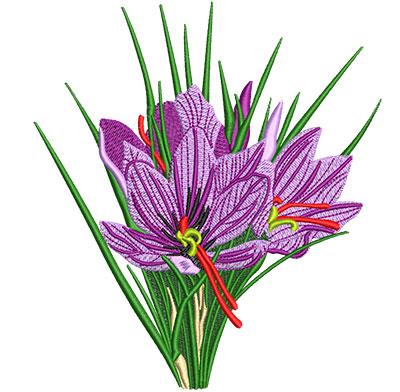 Embroidery Design: Saffron Crocus Flower Lg 5.38w X 6.01h