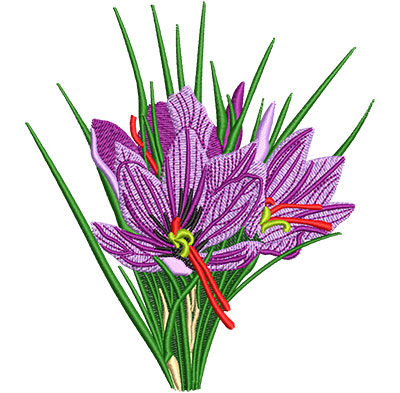 Embroidery Design: Saffron Crocus Flower Med 4.49w X 5.01h