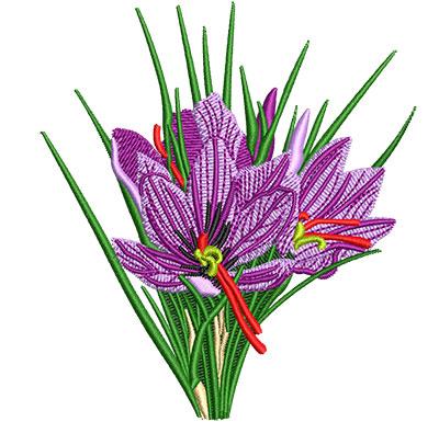 Embroidery Design: Saffron Crocus Flower Sm 3.59w X 4.01h