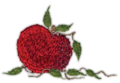 "Embroidery Design: Apple2.60"" x 1.68"""