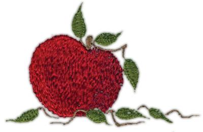 "Embroidery Design: Apple3.63"" x 2.36"""