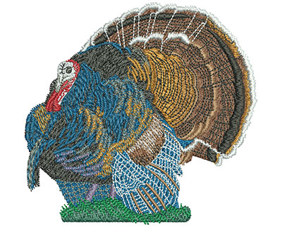 Embroidery Design: Turkey Time Med 4.17w X 3.97h