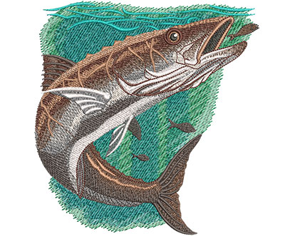 Embroidery Design: Cobia Lg 5.84w X 6.07h