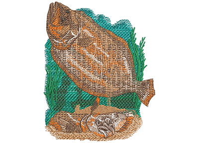 Embroidery Design: Flounder Lg 4.27w X 4.99h