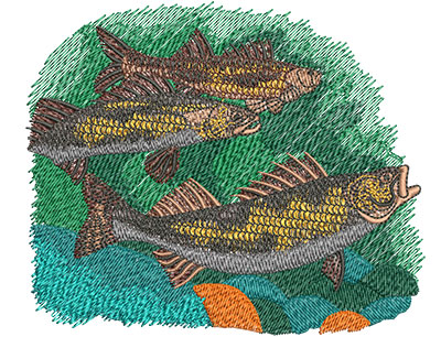 Embroidery Design: Saugers Swimming Med 5.00w X 4.19h