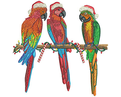 Embroidery Design: 3 Christmas Parrots Lg 5.95w X 5.96h